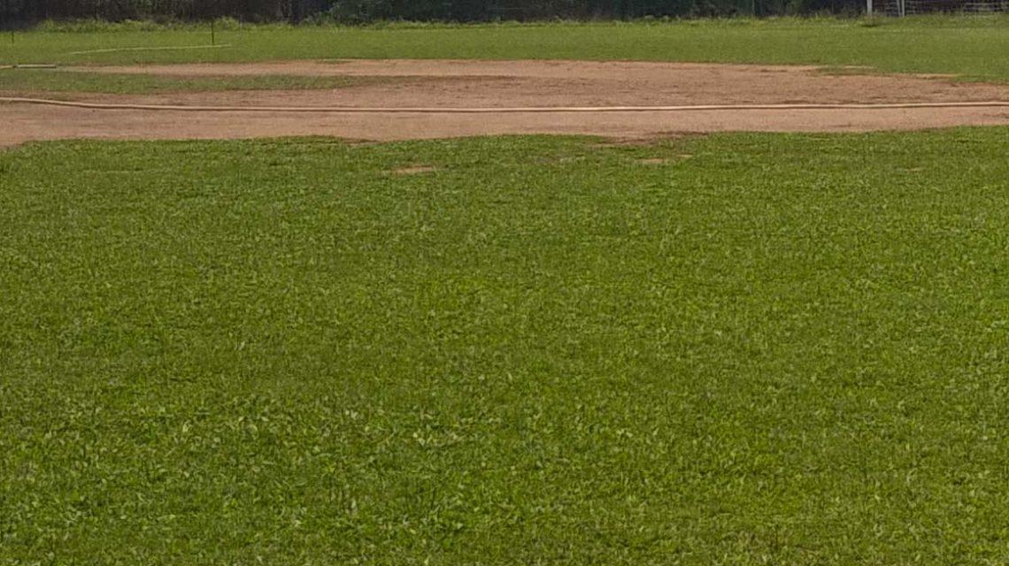 Minh Nhat - Field 1