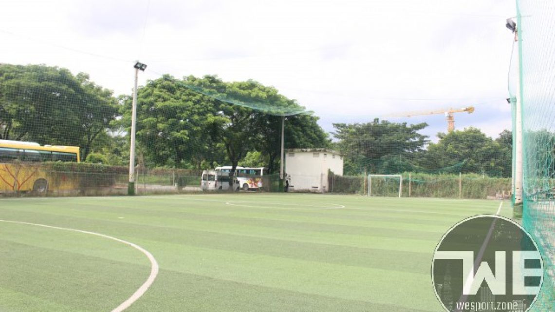Huynh De - Field 2